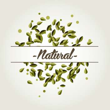Vector natural background with green leaves on white background - vector gratuit #125807