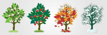 Vector illustration of colorful seasons trees on white background - vector gratuit(e) #126447