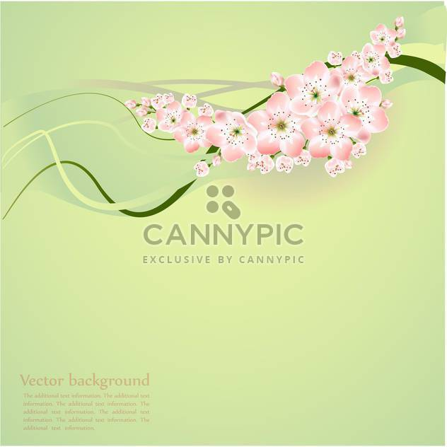 Spring background with beautiful spring flowers - Free vector #127117