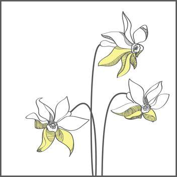 Stylized yellow narcissus flowers on white background - vector gratuit(e) #127397