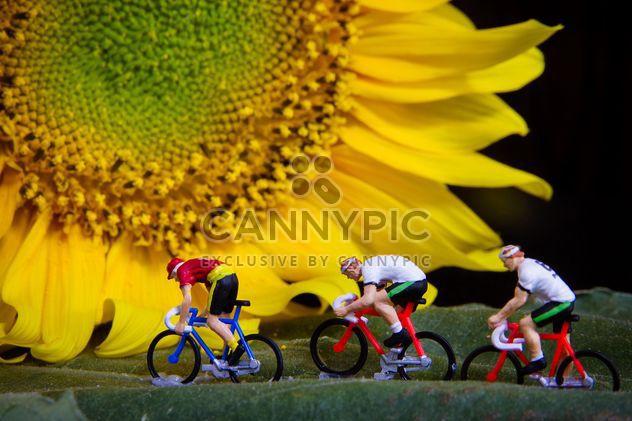 Miniatur-Radfahrer auf grünes Blatt und Sonnenblume - Free image #136367