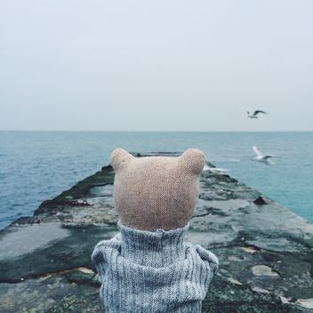 A bear is standing and thinking on the sea pier - image #136427 gratis