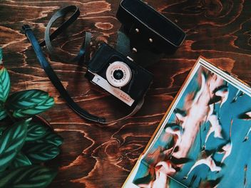 Vintage camera, book and plant - image gratuit #136487