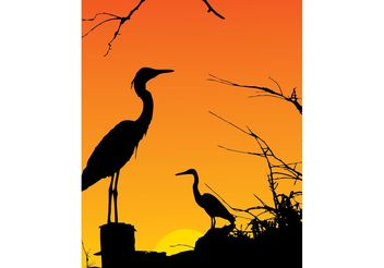 Two Herons Resting - Free vector #139207