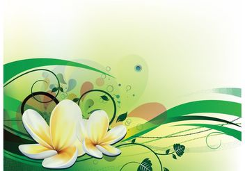 Vector illustration with plumeria - Free vector #139677