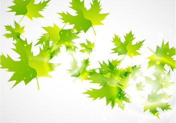 Green Leaf Vector Background - vector gratuit #145587