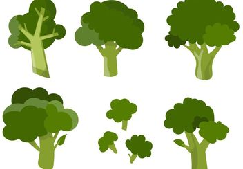 Various Broccoli Vectors - Free vector #145607