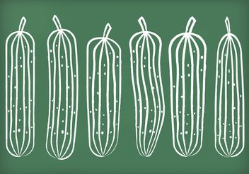 Chalk Drawn Cucumber Vectors - Free vector #145677