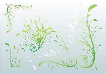 Delicate Plants - vector gratuit #145987