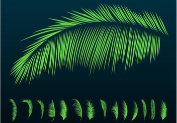 Palm Leaves Silhouettes - Free vector #146017