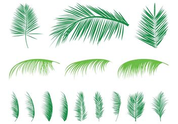 Palm Leaves Silhouettes Set - Free vector #146047
