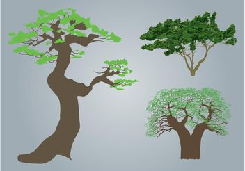 Trees - Free vector #146147