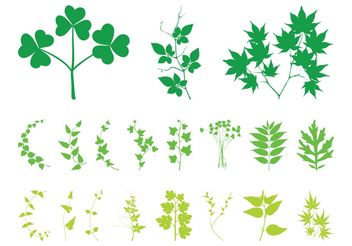 Plant Leaves And Branches - vector gratuit #146497