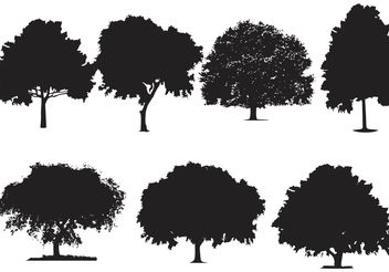 Oak Tree Silhouette Vectors - бесплатный vector #146667