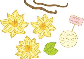 Hand Drawn Vanilla Flower Vectors - Free vector #147617