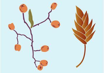 Autumn Plants - Free vector #147887