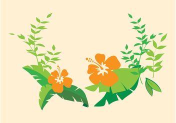 Hibiscus Flowers - vector gratuit #152657