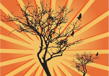 Tree Sunburst Graphics - Free vector #152857