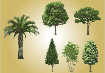 Realistic Tree Vectors - Free vector #152987