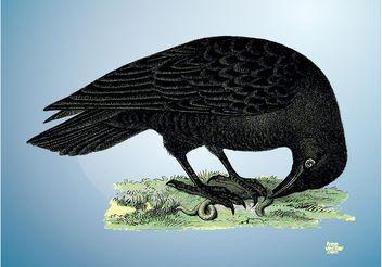 Raven Vector - vector #157147 gratis
