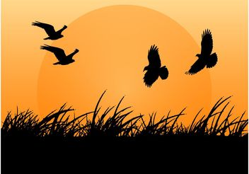 Birds Vector - vector #157687 gratis