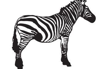 Vector Zebra - Free vector #168287