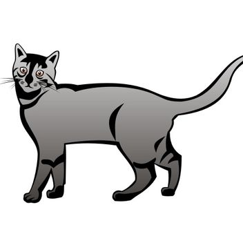 A Cat Vector - vector gratuit #173337