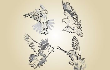 Sketchy Pigeon Vector - Free vector #174357
