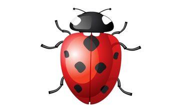 Vector Ladybug - Kostenloses vector #174827