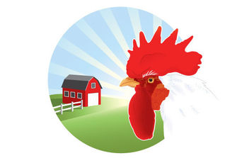 Free Vector Rooster - бесплатный vector #175407