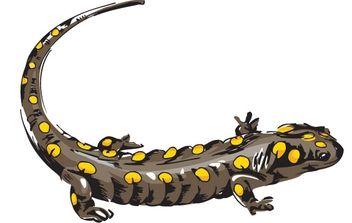 Lizard 1 - Free vector #176437