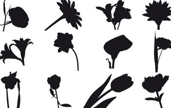 free field flowers - vector gratuit #178207