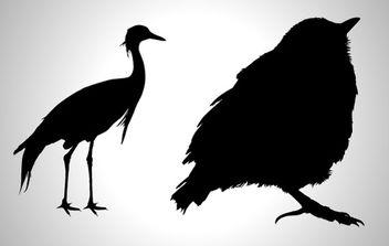 Birds - vector gratuit #179027