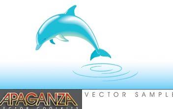 Dolphin Vector - Free vector #179217