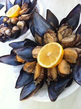 stuffed mussels - Kostenloses image #182947