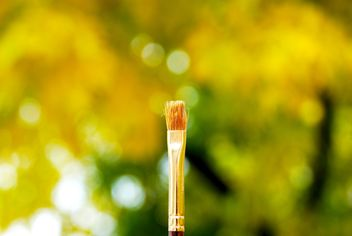 Brush macro - image gratuit #183657