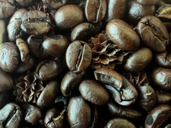 Coffee beans - Free image #183687