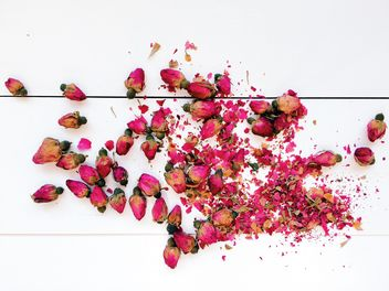 Dried rose buds - image #184237 gratis