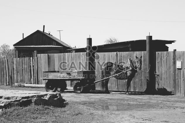 Caballo en la aldea - image #185897 gratis