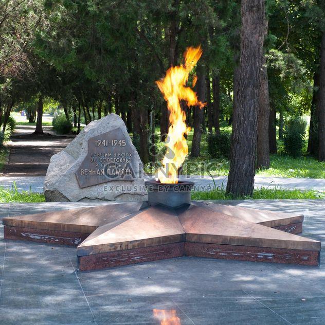 Llama eterna, ciudad de Lermontov - image #186207 gratis