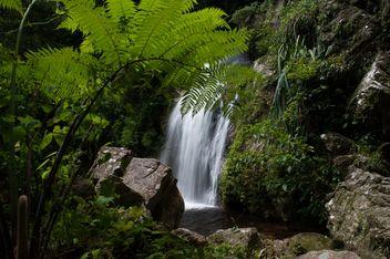 Waterfall#dadfa#nasan#suratthani#mountain#biological#people#travel#nature - Kostenloses image #186307