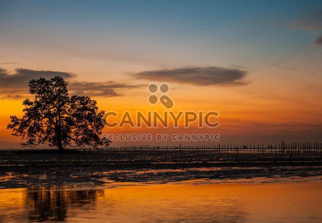soirée du coucher du soleil - image gratuit(e) #186587