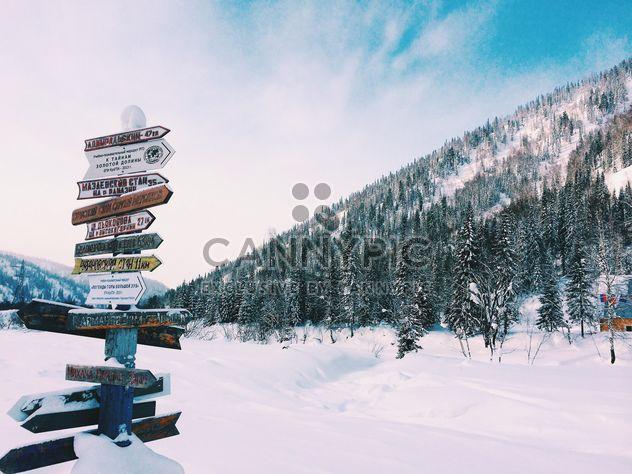 Beautiful winter landscape - Free image #186607