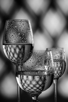Stemware with liquid - Free image #187667