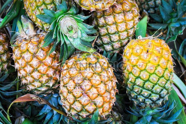Pineapple in street market - Free image #198047