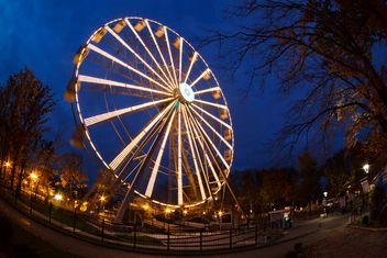 Ferriswheel in evening park - image gratuit #198567