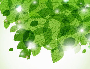 Green Leaves Sunlight Background - vector gratuit(e) #201417