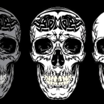 Skull - Kostenloses vector #202727