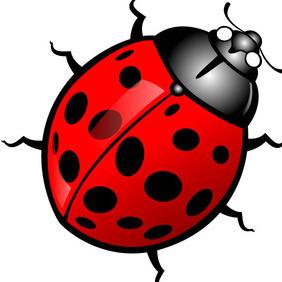 Ladybug Vector - Kostenloses vector #212497