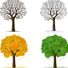 Same Tree In Different Seasons - Free vector #214217
